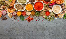 KOCHREISEN | Kochen & Reisen kombinieren