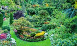 GARTENREISEN | Eine Gartenreise als Bildungsreise